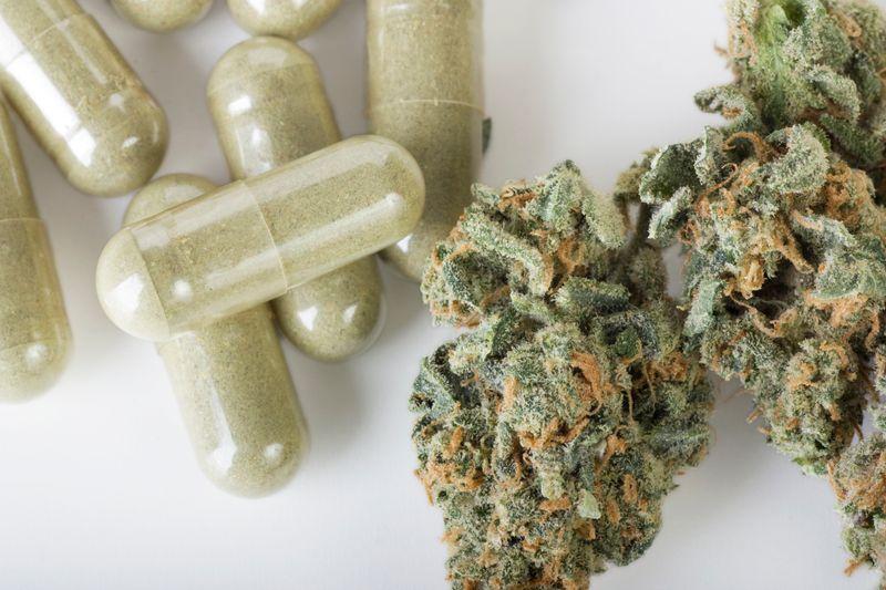 Recreational marijuana legalisation reduces US opioid deaths