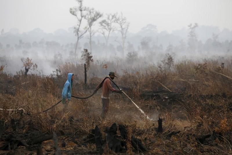 Indonesian workers extinguish a fire at a palm oil plantation in Sumatra