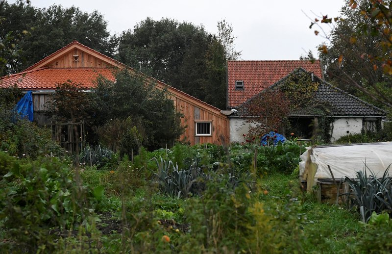 'Cultist' detained in Dutch farm family case