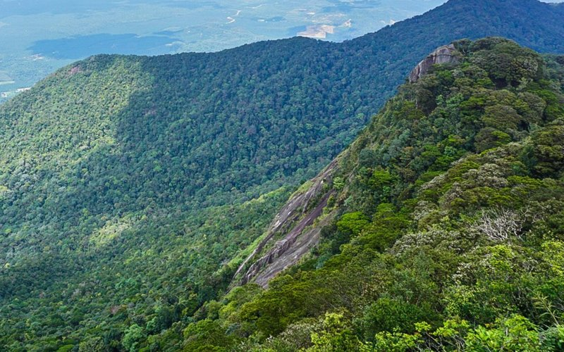Gunung Ledang, hutan lagenda yang harus dilawati | Free Malaysia Today (FMT)