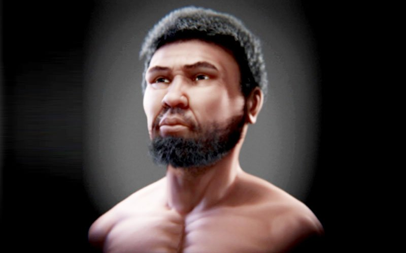 A reconstruction of 'Perak Man'. (USM, Malaysia Journal of Medical Sciences pic)